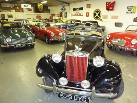 VARIED SELECTION of cars